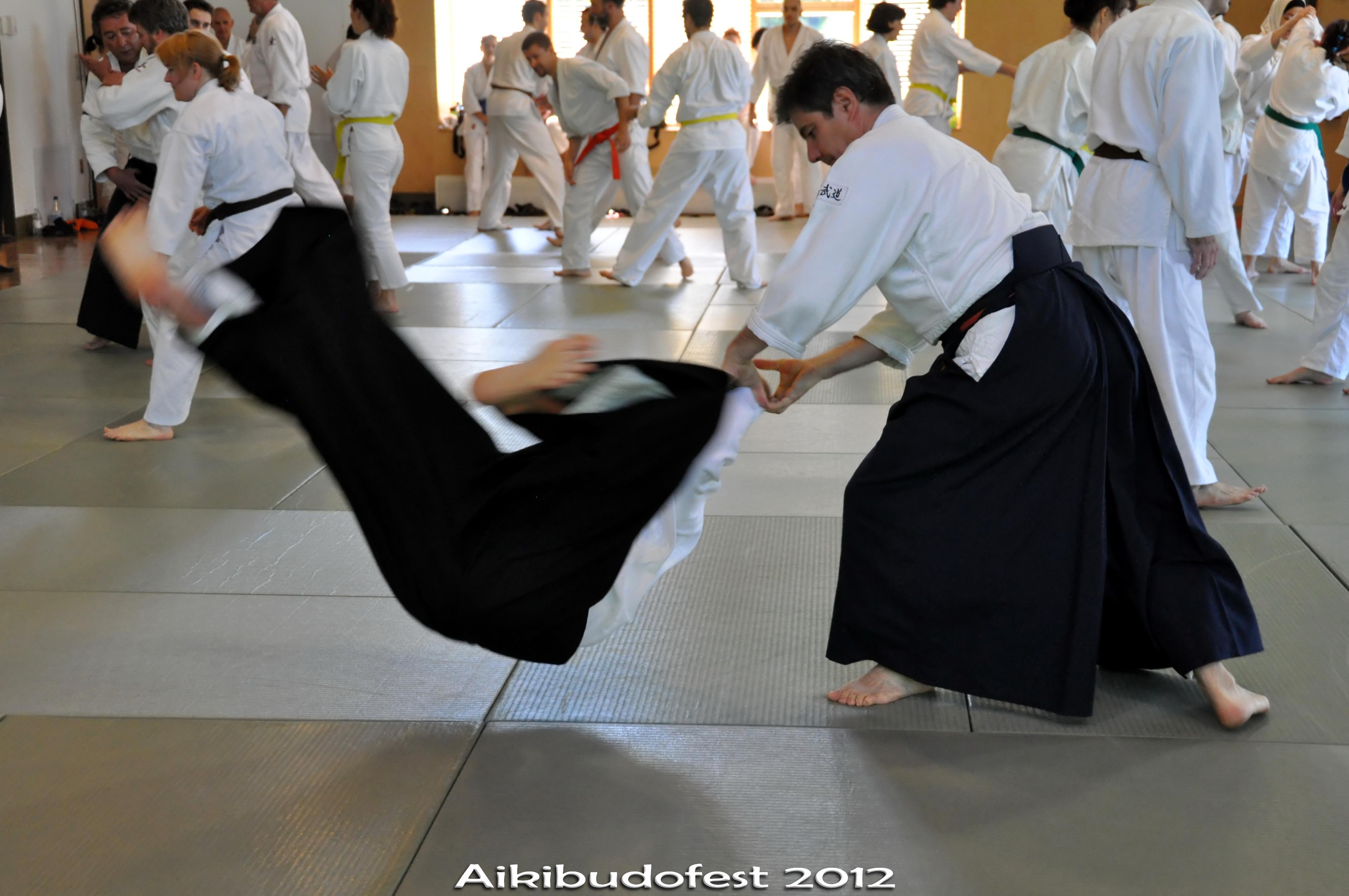 Aikibudofest_2012_samedi_1640