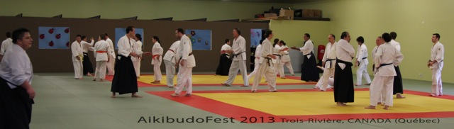 aikibudofest2013_082a