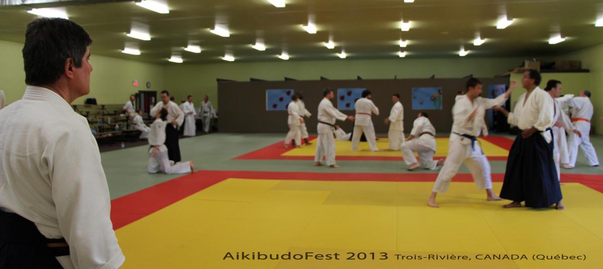 aikibudofest-2013-071a